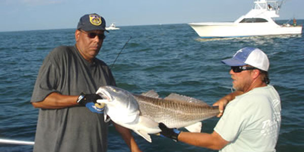 Virginia beach fishing charters aquaman sportfishing for Virginia beach fishing charters
